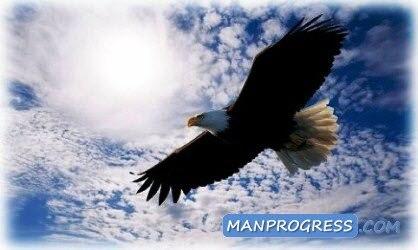 Хочу свободы...