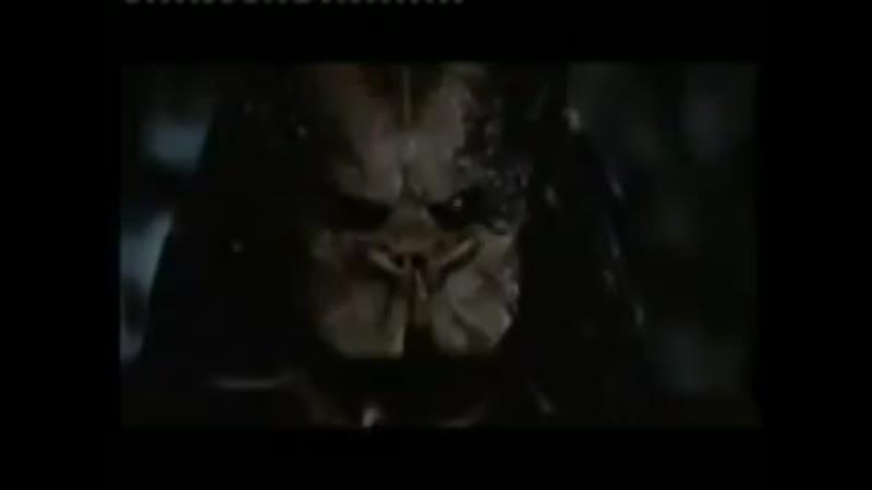 Серая Шейка 2 Пародия на Хищник