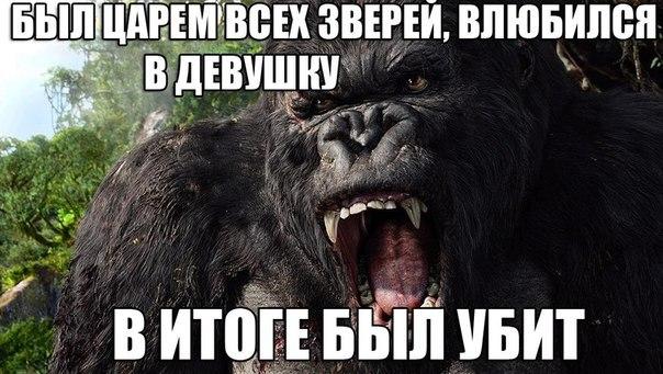 http://cs313324.vk.me/v313324288/b91/BZGrq85i7gk.jpg