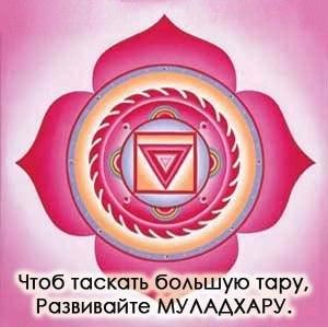 http://cs416630.userapi.com/v416630225/281f/SdYlTGCAb4w.jpg