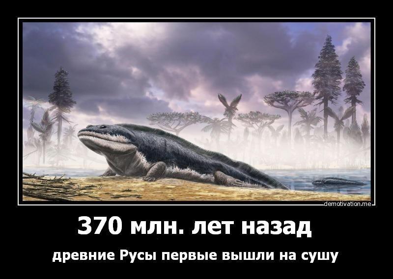 http://cs411116.vk.me/v411116348/e1/WcpZXjCXD64.jpg
