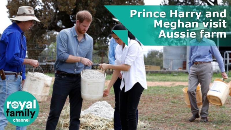Побывали на ферме австралийца пострадавшей от засухи
