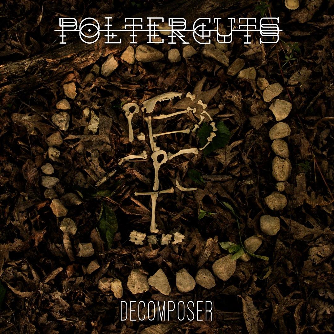 Polterguts - Decomposer (2016)
