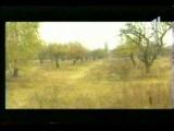 Репортаж телеканала СТБ о поселении Родовых поместий под Киевом.