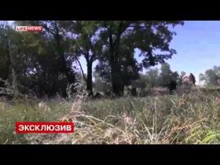 Луганск Бой карателей батальона Айдар хунты кровавого Обамы при попытке прорваться из окружения