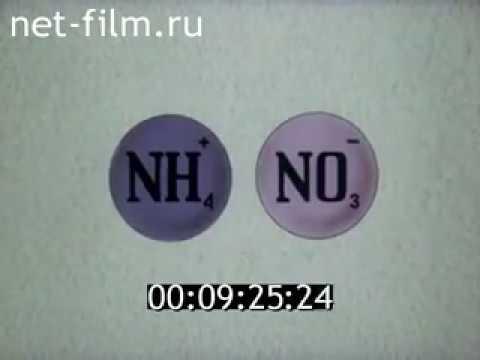 Азот, фосфор, калий (NPK), микроэлементы