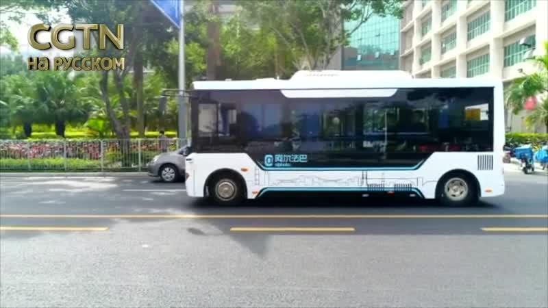 Весь общественный транспорт китайского города Шэньчжэнь перешёл на электричество