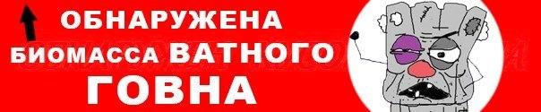 Вопрос оказания НАТО военной помощи Украине еще будет обсуждаться, - депутат Бундестага - Цензор.НЕТ 9664