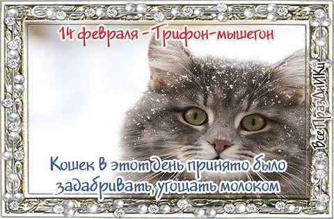 http://cs543107.vk.me/v543107824/24c/JkxMqqc67gE.jpg