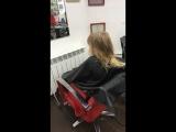 Подстригаться пришли в Колибри