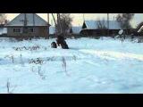 Снегоход на пневмоколесном ходу