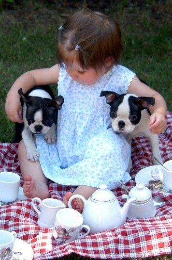 Молочный чай для всей семьи
