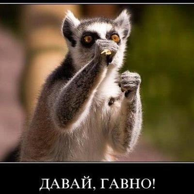 Радион Воробьйов, 14 августа , Верхний Рогачик, id210643505