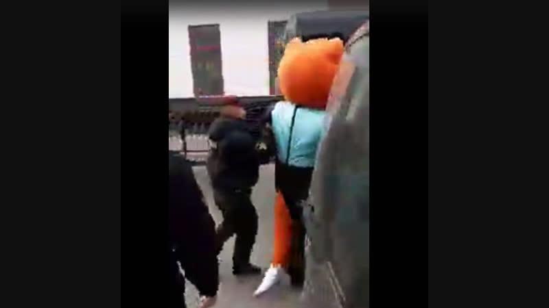 У Берасці АМАП затрымаў чалавека ў касцюме ліса