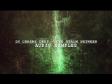 In Chasms Deep  - The Realm Between (Album Sample)