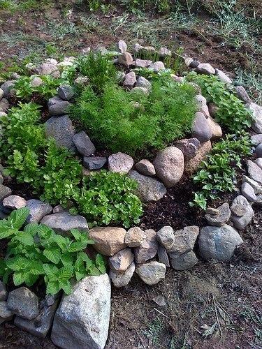 клумба спираль попробуйте сделать овощную клумбу-спираль с пряными или овощными травами. такая спираль обеспечивает микроклимат и различные типы почв для различных видов растений. вверху в
