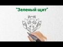 Экологический отряд Зеленый щит