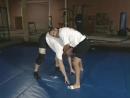 MMA Tigris Дэн Хендерсон