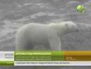 Арктический плавучий университет завершил поход по северным морям
