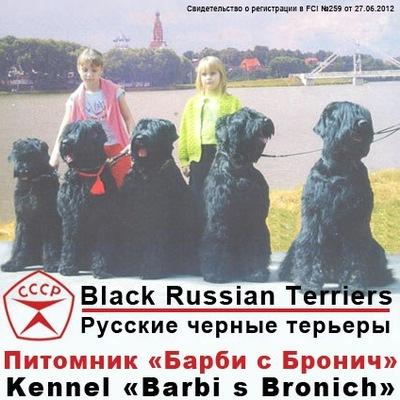 Заводчик русских черных терьеров миронова е