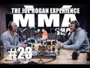 JRE MMA Show 23 with Alexander Gustafsson
