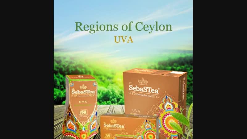 Чёрный чай Uva из коллекции Регионы Цейлона