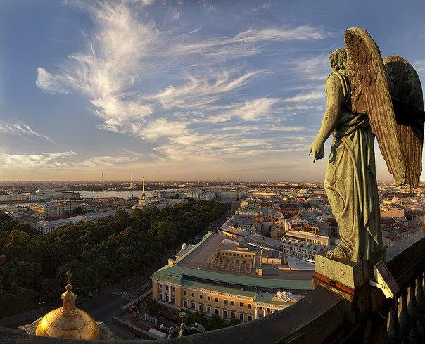 Петербург, это для вас. Кто возвращается из Москвы в Северную столицу