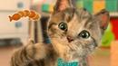 ❤Мимишный МАЛЕНЬКИЙ КОТЕНОК😻 Мультик про котят для малышей на канале малышерин