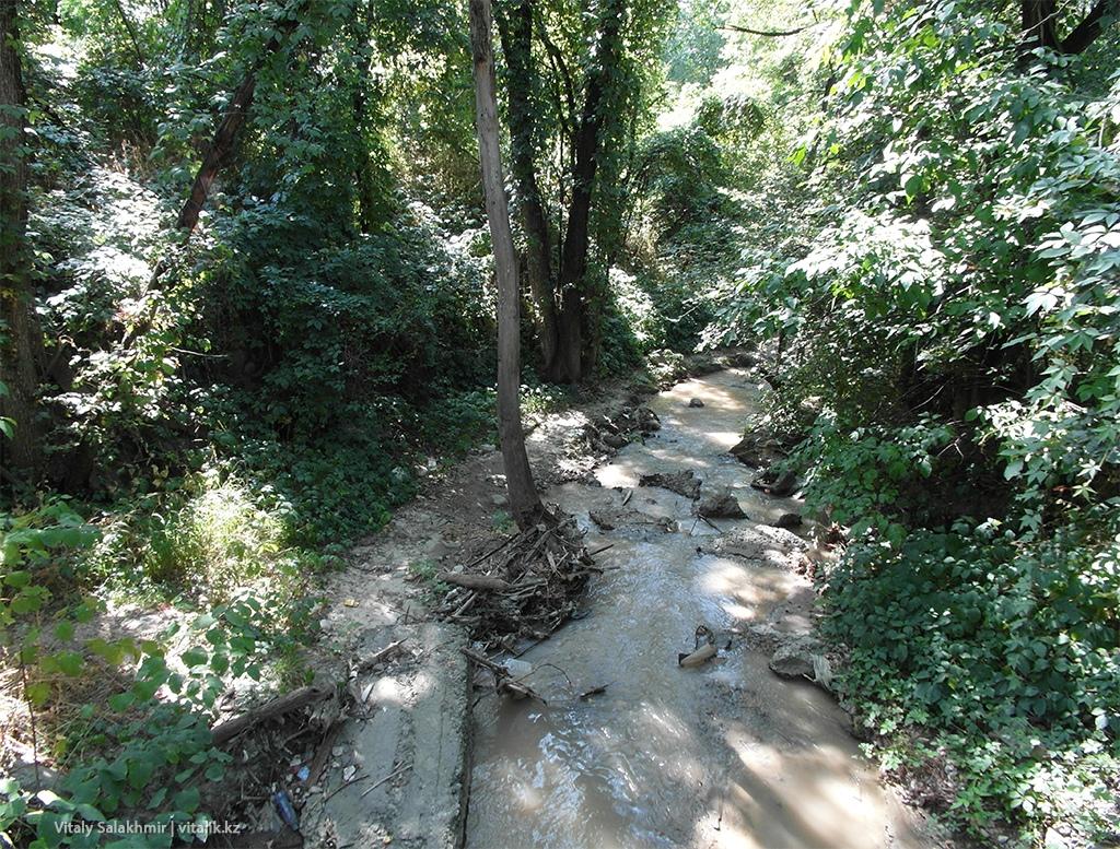 Речка внутри Ботанического сада Алматы 2018