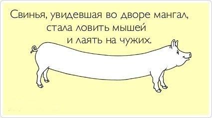 http://cs406130.userapi.com/v406130087/6c7c/5vs71EfrbM8.jpg