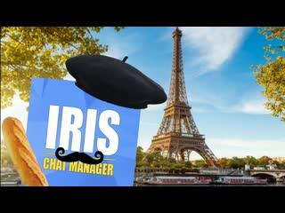 Ирис чат-менеджер | french google translate meme