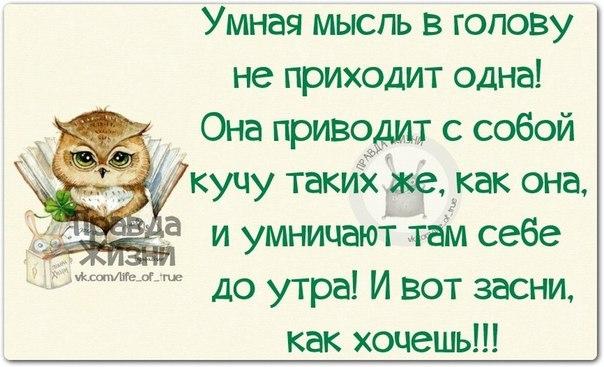 https://pp.vk.me/c619618/v619618123/146e0/--nO5E9xnu0.jpg