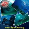 Дайвинг в Сочи | Enjoy-dive.org