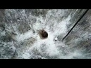 Медведь, укладывающийся в спячку вблизи Снежинска