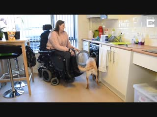 Disabled woman teaches dog to help with washing