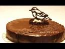 Торт Птичье молоко на агар-агаре - Рецепт Бабушки Эммы