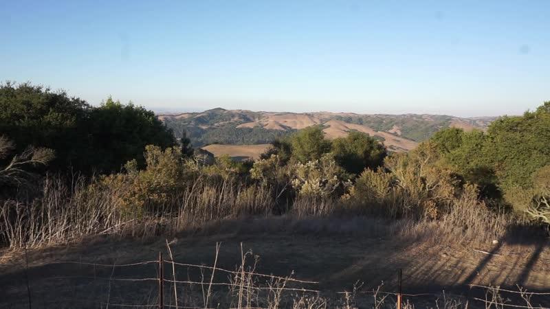 Tilden regional park (CA)