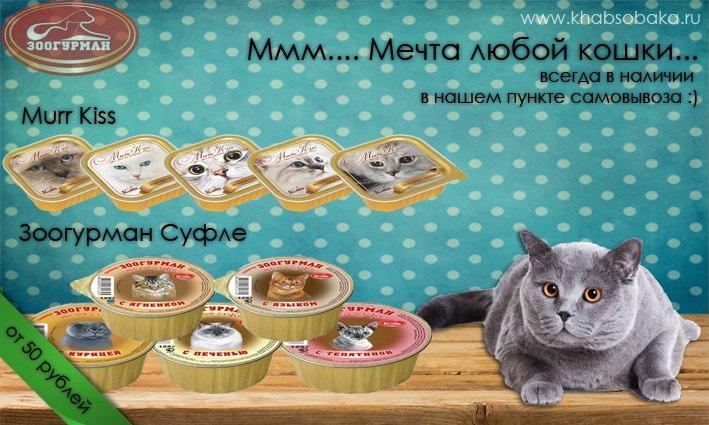 ХАБСОБАКА: Большое поступление знаменитых игрушек Гигви!!!!!! (Хабаровск) - Страница 5 XaGut8KIyl0