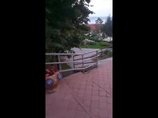 Арсен Таибов - Live