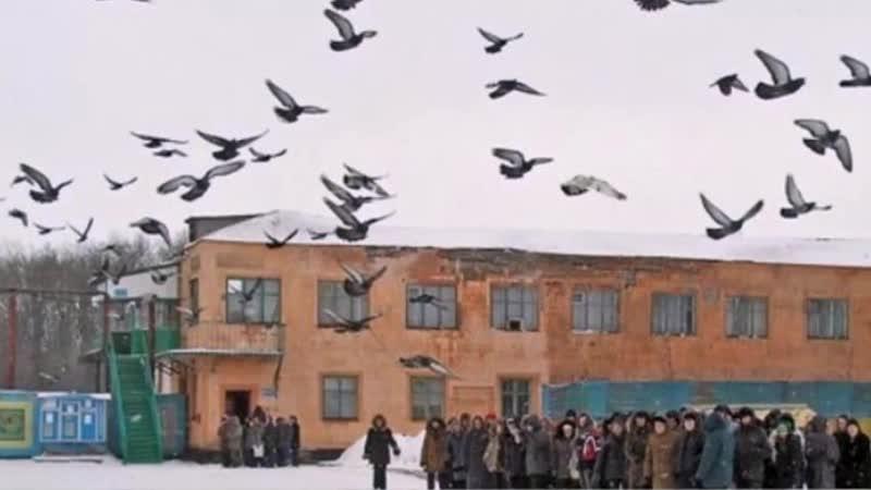 Миша Мирный - Голуби над зонами (Сл.И.Блат) Челябинским православным фондам посвящается.