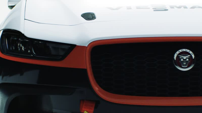 Viessmann - генеральный титульный спонсор команды Jaguar I-PACE eTROPHY Teams Germany