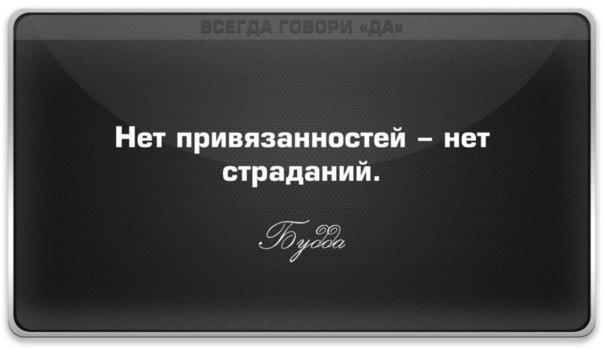 https://pp.vk.me/c635100/v635100545/163aa/P0Yb7PIXGMQ.jpg