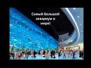 Незабываемое путешествие в OAE с Coral Travel !