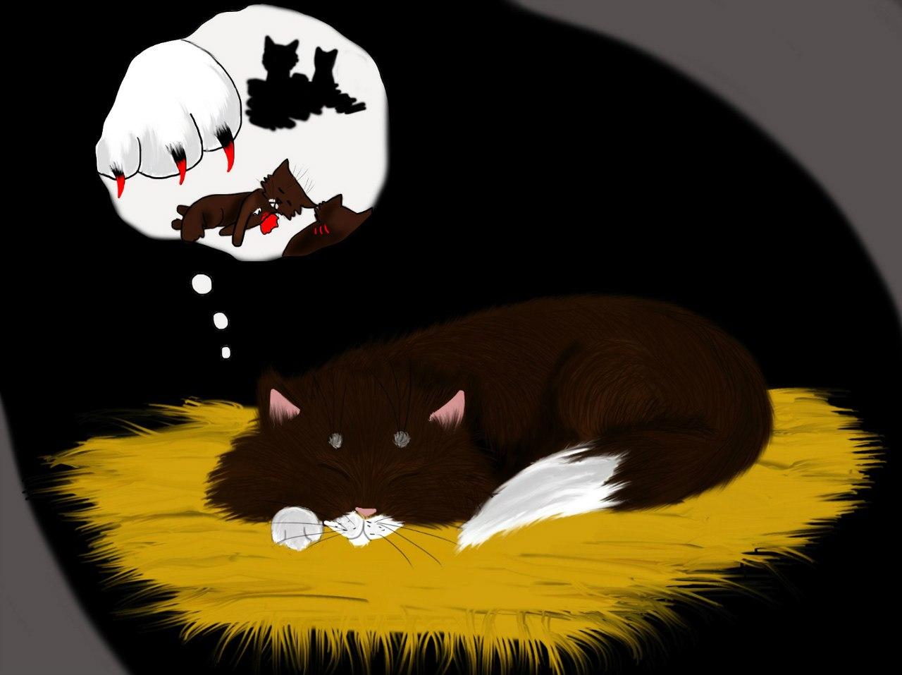 Обои морда, Хищник, угроза, дикая кошка, пасть, клыки, ссора, оскал, ярость, рык, Белый тигр, злость. Животные foto 10