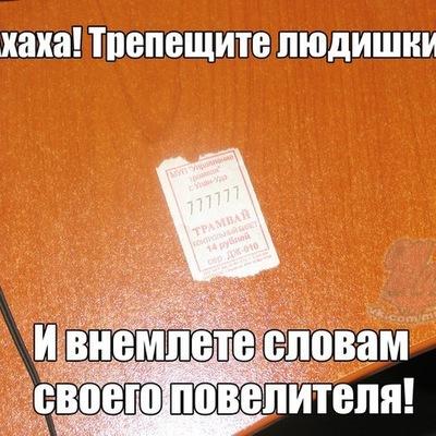 Егор Николаев, 24 мая , Вологда, id210387766