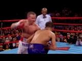 Легендарные вечера: История Гатти - Уорд   BoxingRoom
