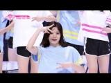 PRODUCE 48 | AKB48 - Накано Икуми - Nekkoya (pick me) fancam