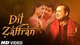 Dil Zaffran Video Song | Rahat Fateh Ali Khan | Ravi Shankar | Kamal Chandra | Shivin | Palak