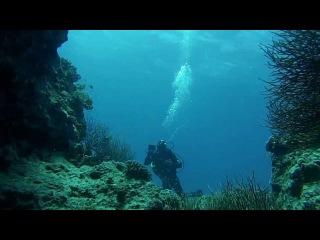 RED SEA DIVE Apr2013 (Дайвинг в Красном Море с DIVE TOO)