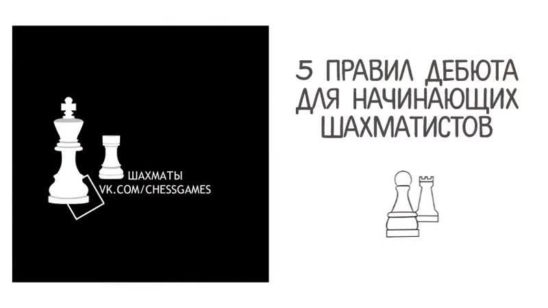 Пять правил дебюта для начинающих шахматистов